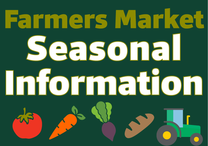 Seasonal info webslider