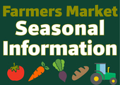 Feature box seasonal info webslider