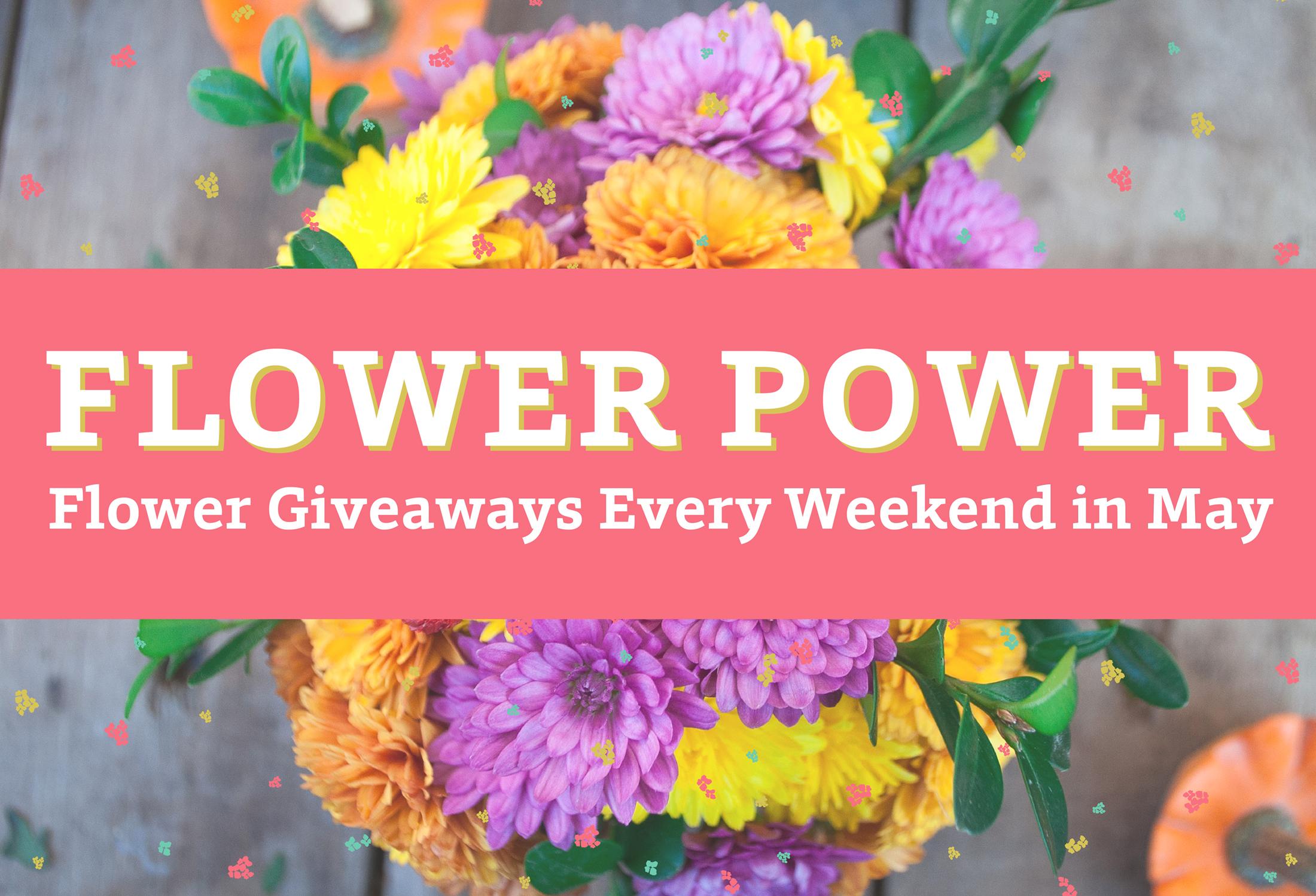 Flowerpower webslider 01  2