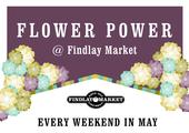 Feature box flower power web slider