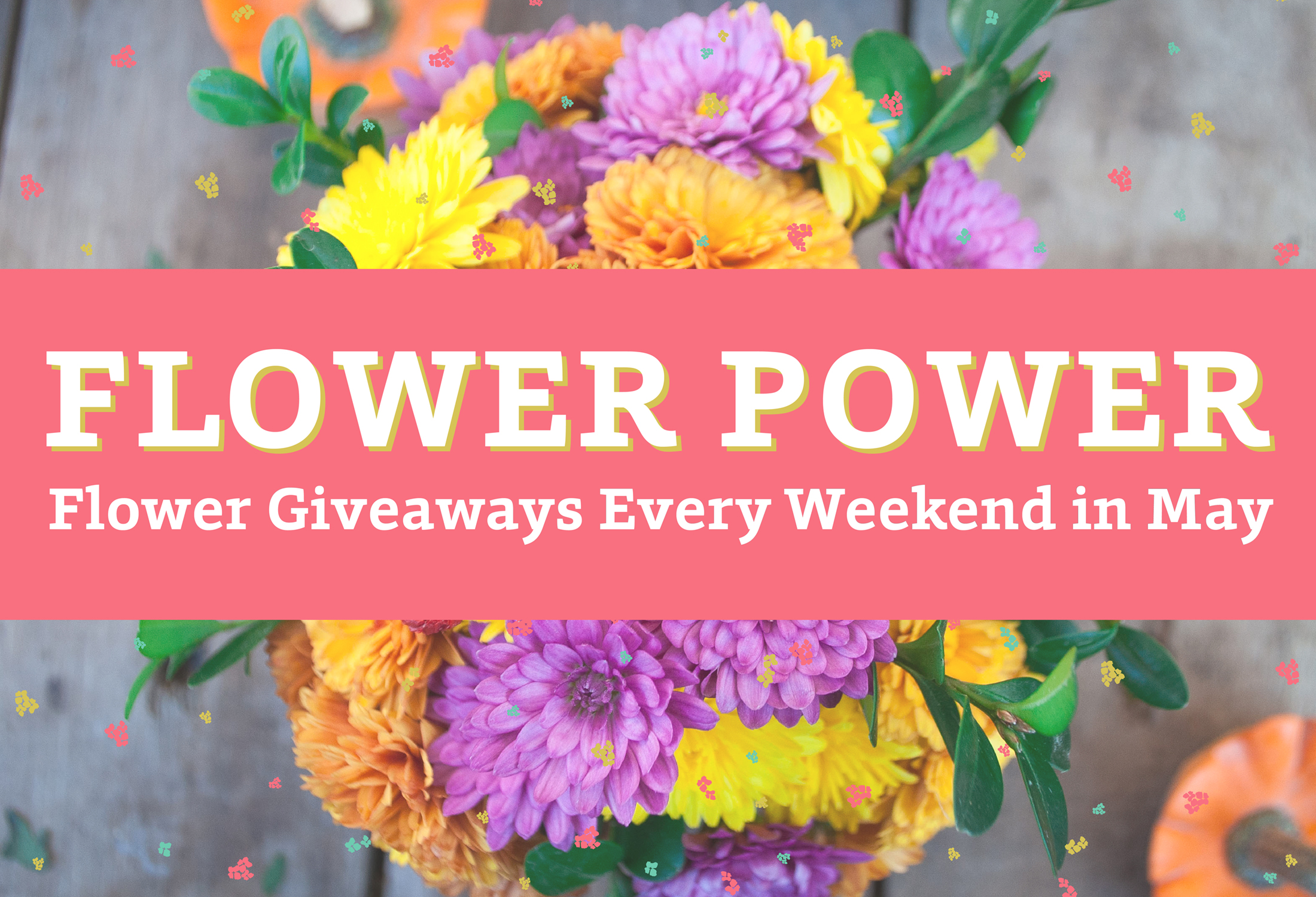 Flowerpower webslider 01  2