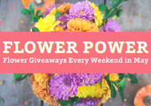 Feature box flowerpower webslider 01  2
